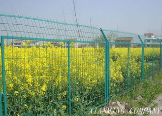 China PVC Coated Steel Farm Mesh Fencing For Feeding Factory Eco Friendly supplier