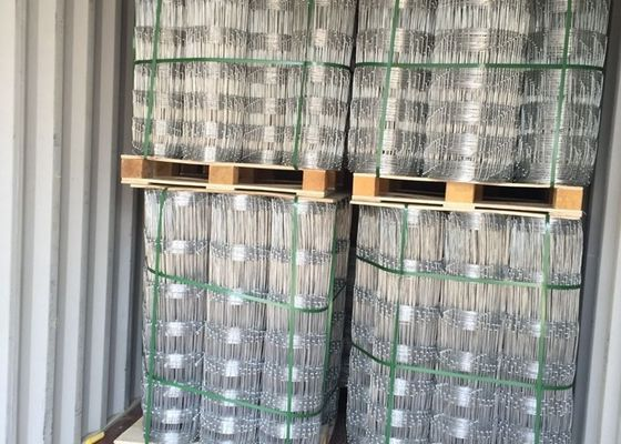 China Hot Dipped Galvanized Field Fence , Hinge Joint Wire Fencing Bright Color supplier