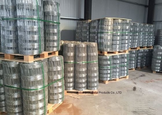 China 1.2 M Height galvanised Grassland Cattle Wire Fence 50m and 100m Length supplier