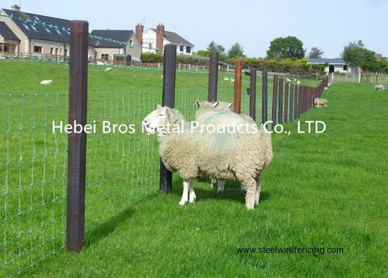 China Hot Dipped Galvanized Field Fence , High Tensile Woven Wire Fence Rolls supplier