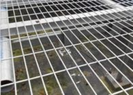 China Easily Assembled Welded Wire Mesh Panels Square Hole For Greenhouse Bed Nets factory