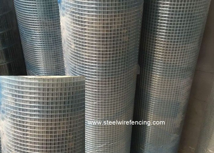 Animal Security Cages Welded Wire Mesh Rolls / Heavy Duty Wire Mesh ...