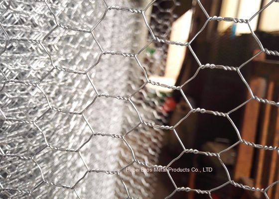 Durable Electro Galvanized Gabion Wire Mesh Fence / Rabbit Wire Netting