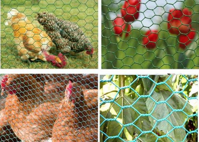 Professional Galvanized Gabion Wire Mesh Safety for Poultry , 0.5-2.5m Width