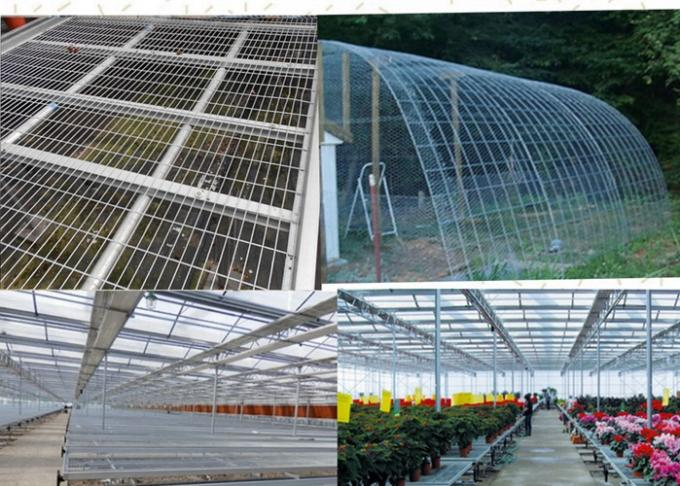 Easily Assembled Welded Wire Mesh Panels Square Hole For Greenhouse Bed Nets