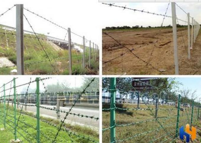 Green Security Barbed Wire Roll Coil Protection For Grass Boundary