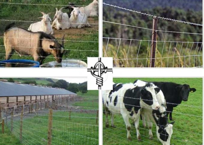 Farm Guard Cattle Wire Fence Zinc Coating With 0.8-2m Height , Rust Resistance