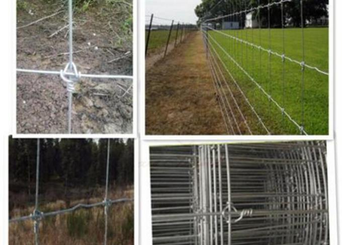 Galvanized Welded Wire Livestock Panels Low Carbon Steel Good Flexibility