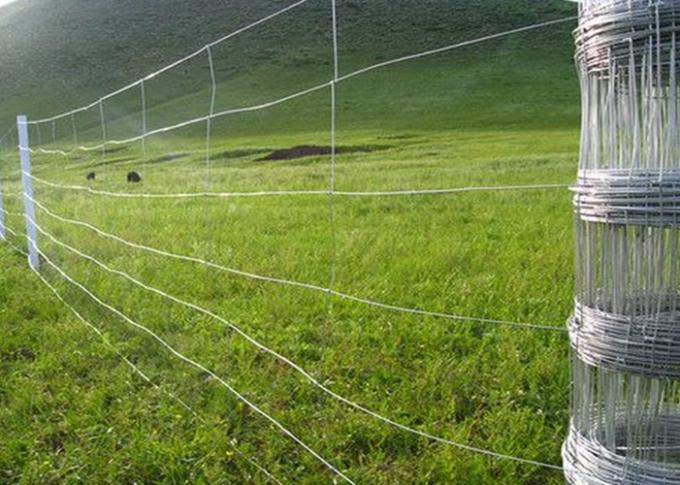 Hot Dipped Galvanized Field Fence , Hinge Joint Wire Fencing Bright Color