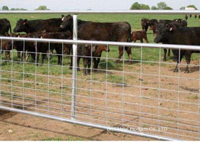 Metal Cattle Fence Panels , Galvanized Field Fence For Livestock