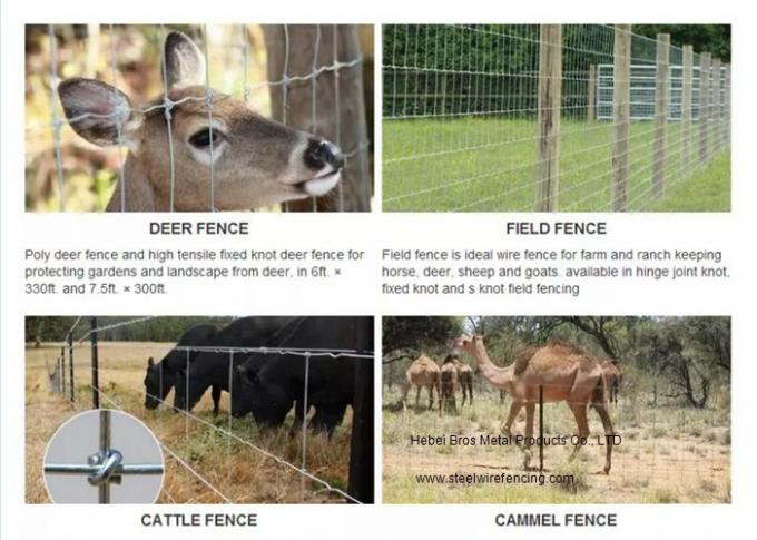 Galvanized Fixed Knot Cattle Wire Fence Easy Install With High Strength