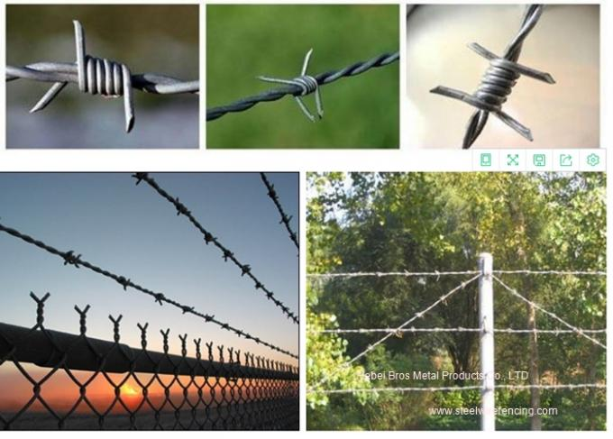 Hot Dipped Galvanized Barbed Wire Mesh Roll / Barbed Wire Mesh Fence Design