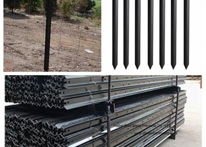 Black Steel Y Post & Star Picket With Holes For Cattle Fence , Australia Style
