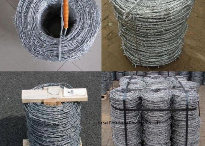 12x14 Hot Dipped Galvanized Barbed Wire Coil,  Security  Mesh Fence